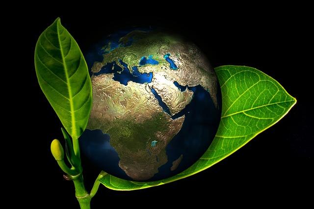 Приглашаем принять участие в международной кампании по снижению выбросов СО2!
